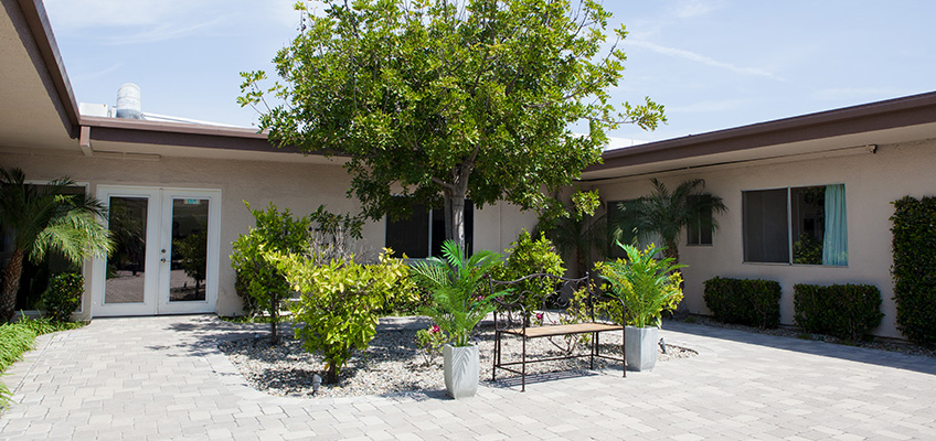 Outdoor back patio, garden, and seating area