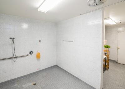 College Vista bathroom shower