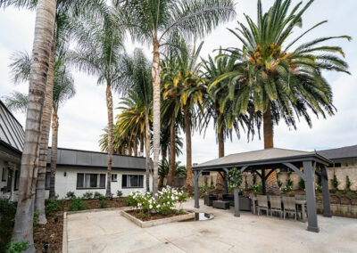 Extended Care patio and palm trees